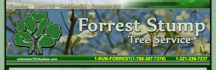 Forrest Stump Tree Service Orlando, FL